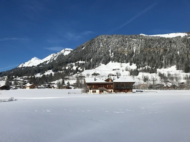 MAGNIFICENT STAND ALONE CHALET WITH SPECTACULAR VIEWS - GSTAAD